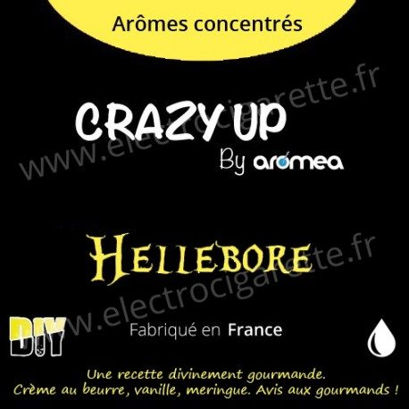 Hellebore - Aromea Crazy Up