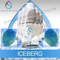 Pack 5 flacons 10 ml Iceberg - Savourea
